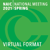 Spring National Meeting