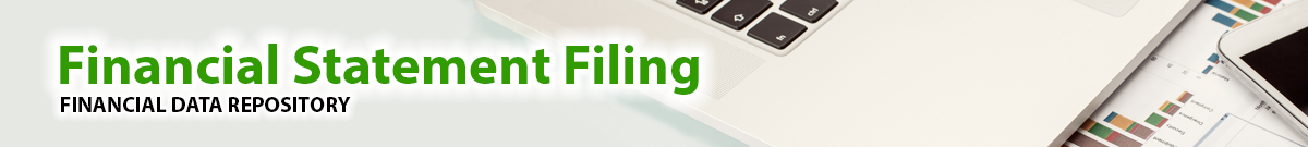 Financial Statement Filing: Financial Data Repository